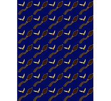Quidditch Pattern (Ravenclaw) Photographic Print