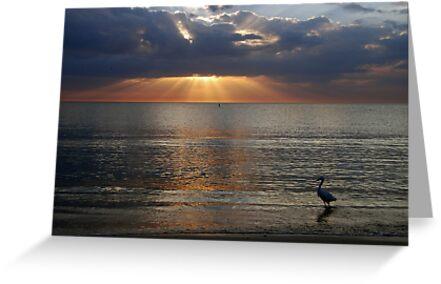 Bonita Beach by Barry Goble