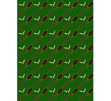 Quidditch Pattern (Slytherin) Photographic Print