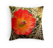 Beauty Among the Spines Throw Pillow