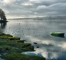 River Kent-Arnside.  by Lilian Marshall
