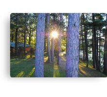 Sunrise in Hayward, Wisconsin Canvas Print