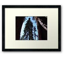 Under giants Framed Print