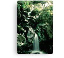 Misty Waterfall - Gouganbarra - Ireland Canvas Print