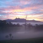 Misty Morning Mt Warning Tyalgum by tareeskate
