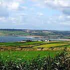 Garretstown - Ireland by MacsfieldImages