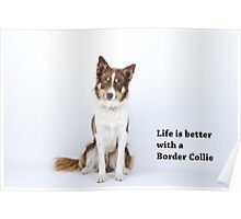 Life is better Poster