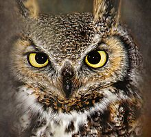 The Stare by Kay Kempton Raade