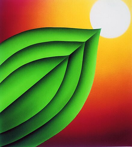 Graphic Leaf by jsalozzo