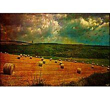 Pastoral Photographic Print