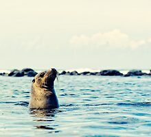 EQUATORIAL MEDITATION - Galapagos Islands, Ecuador by Anthony Ghiglia