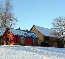 The Farm by Jellybean720