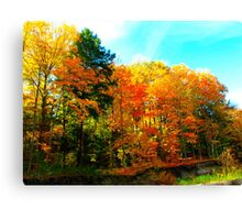 Toy soldiers of Autumn Canvas Print
