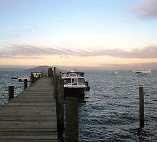 Rotorua Lake by dozzam