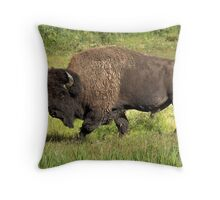 Big Bull Bison Throw Pillow