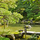 pond garden, Ginkaku-ji Temple, Kyoto, Japan by johnrf