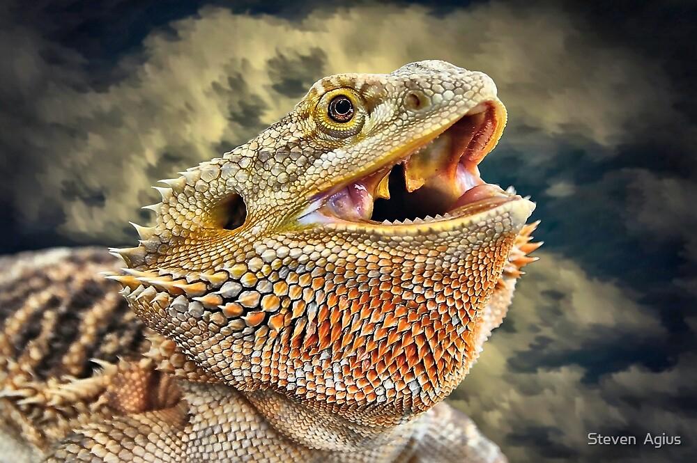 Dragon Breath by Steven  Agius