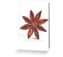 Star Anis 4 Greeting Card
