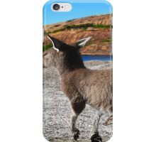 kangaroo at lucky bay iPhone Case/Skin