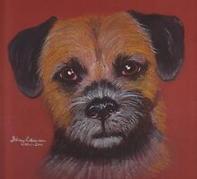 Sid, the Border Terrier by Hilary Robinson