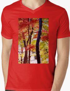 Autumn Colours 10 Mens V-Neck T-Shirt