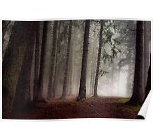 Eerie forest Poster