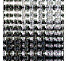 DSCN0034 _GIMP _XnView Photographic Print