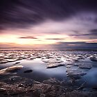 Mud flats by Paul Alsop