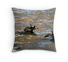 Cormorants drying their wings in Boulogne, France Throw Pillow