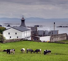 Islay: Ardbeg Distillery by Kasia-D