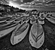 Winter dream by Aleksandar Topalovic