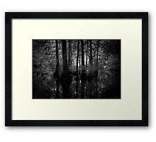 Hidden slough - Artesian Lakes, Texas Framed Print