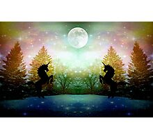 Moon Light Dance ©  Photographic Print