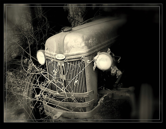 Built Ford tough.. by lynell