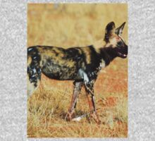 Random African Hunting Dog Kids Clothes