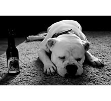 Dog Beer Photographic Print