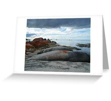 The unique Bay of Fires, Tasmania Greeting Card