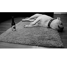 Dog after beer Photographic Print