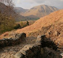 Eskdale Track From Wastwater by Linda Lyon