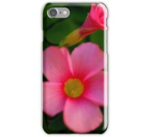 Open and Closed iPhone Case/Skin
