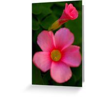 Open and Closed Greeting Card