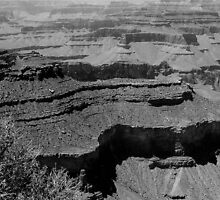 South Rim Black and White by Bob Moore
