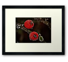 Berries on Ice Framed Print