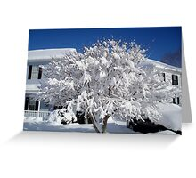 Snowfall 2011  ^ Greeting Card