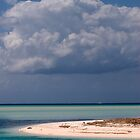 Beach, Spanish Wells, Eleuthera, Bahamas by Shane Pinder