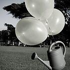 Water Balloons by Maria del Rio