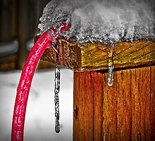 Red Light Hose in Ice - HDR by Maria Schlossberg