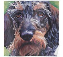 Dachshund Fine Art Painting Poster