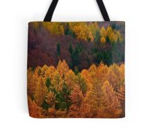 Wonder's of autumn colors  - Poloniae Alpe Besczade . by Brown Sugar - Mr.Medicine . F** Favs  (8) . Views (460) ). Thank you a bunch friends !    Tote Bag