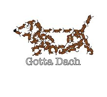 Gotta Dach by Tom Godfrey